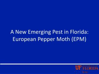 A New Emerging Pest in Florida: European Pepper Moth (EPM)