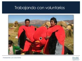 Trabajando con voluntarios