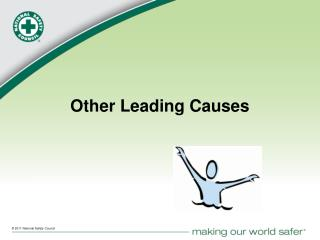 Other Leading Causes
