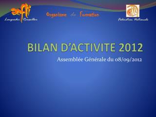 BILAN D'ACTIVITE 2012