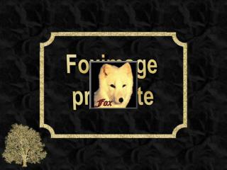 Foximage pr sente