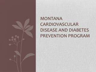 Montana Cardiovascular Disease and Diabetes Prevention Program