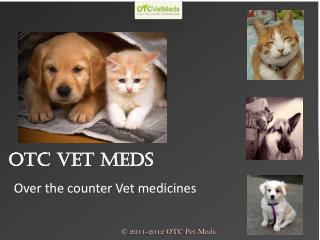 Flea And Tick Control For Cats
