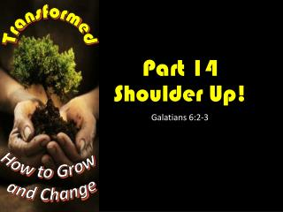 Part  14 Shoulder Up !