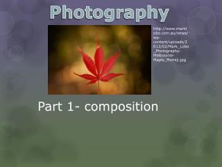 Part 1- composition