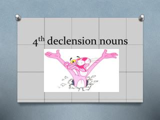 4 th  declension nouns
