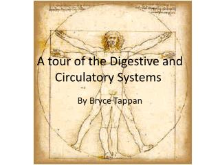 A tour of the Digestive and Circulatory Systems