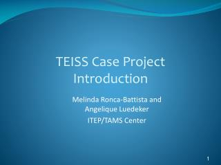 TEISS Case Project  Introduction