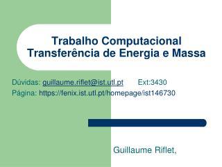 Trabalho Computacional Transferência de Energia e Massa