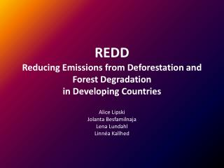 REDD Reducing  Emissions from  Deforestation  and Forest Degradation in Developing  Countries
