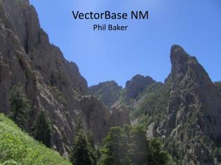VectorBase NM Phil Baker