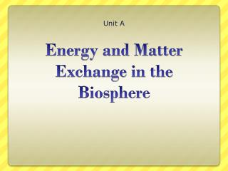 Energy and Matter Exchange in the Biosphere