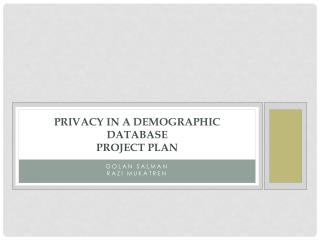 Privacy  in a Demographic Database Project plan