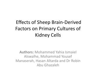 Effects of Sheep Brain-Derived Factors on Primary Cultures of Kidney Cells
