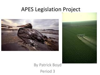 APES Legislation Project