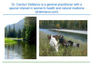 Dr. Carolyn DeMarco is a general practitioner with a special interest in womens health and natural medicine  drdemarco