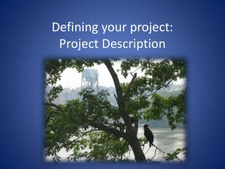Defining your project:  Project Description