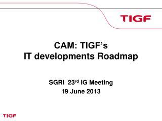 CAM: TIGF's  IT developments Roadmap