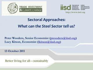 Sectoral  Approaches: What can the Steel Sector tell us?