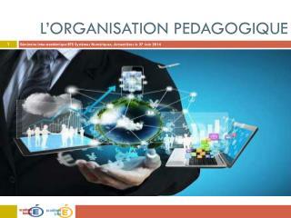 L' orgaNISATION  PEDAGOGIQUE