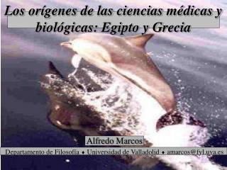 Alfredo Marcos Departamento de Filosof a  Universidad de Valladolid  amarcosfyl.uva.es