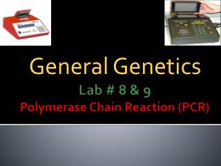 Lab # 8  & 9 Polymerase Chain Reaction (PCR)