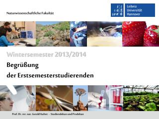 Prof. Dr.  rer . nat. Gerald Kuhnt  -  Studiendekan und Prodekan