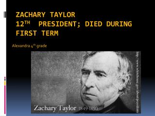 Zachary Taylor 12 th   President; died during first term