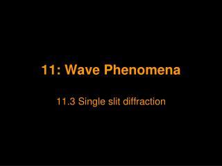 11: Wave Phenomena