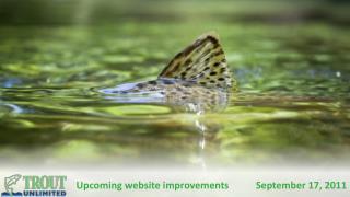 Upcoming website improvements