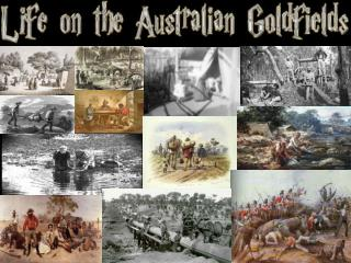 life on the gold feilds part 1