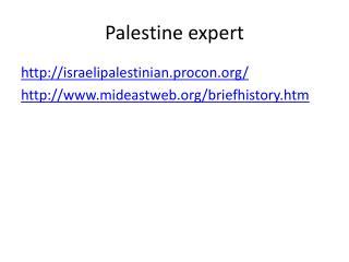 Palestine expert