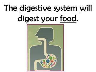 The  digestive system  will digest your  food .
