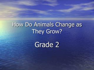How Do Animals Change as They Grow
