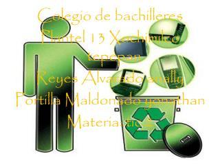 Colegio de bachilleres  Plantel 13 Xochimilco tepepan  Reyes Alvarado anally