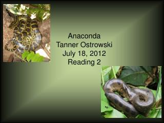 Anaconda Tanner  Ostrowski July 18, 2012 Reading 2