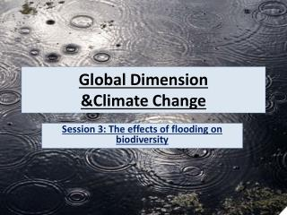 Global  Dimension  &Climate Change