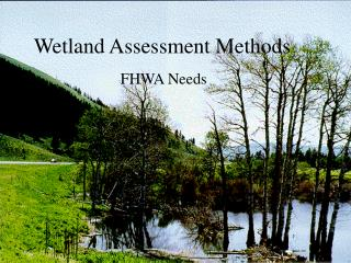 Wetland Assessment Methods