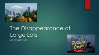 The Disappearance of Large Lots