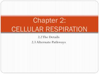 Chapter 2: CELLULAR RESPIRATION
