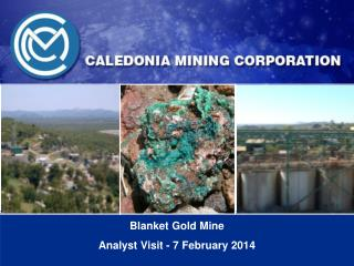 Blanket  Gold  Mine  Analyst Visit - 7 February 2014