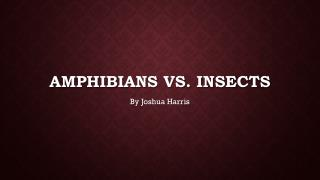 Amphibians Vs. Insects