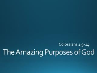 The Amazing Purposes of God