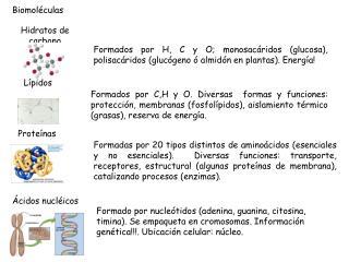 Biomol culas