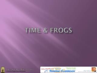Time & frogs