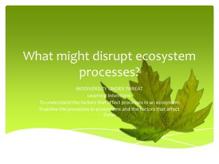 What might disrupt ecosystem processes?