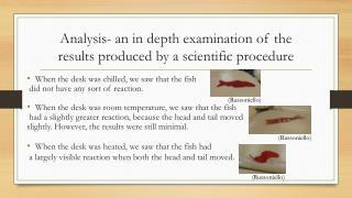 Analysis- an in depth examination of the results produced by a scientific procedure