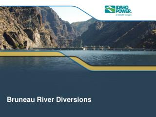 Bruneau  River Diversions