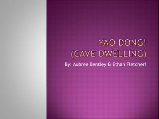 Yao dong! (cave dwelling)