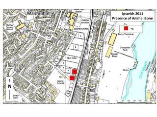 Ipswich  2011 Presence of Animal Bone